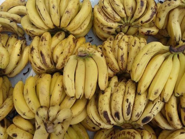 сорт банани кавендиш