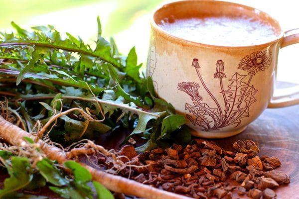 чай от корен на глухарче