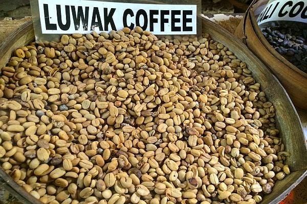 Кафе Копи Лувак