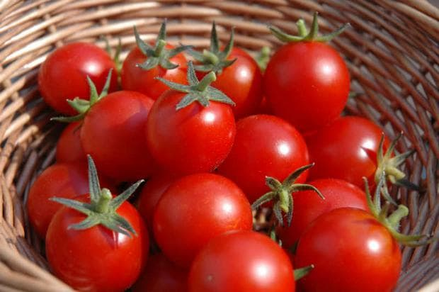 кошница с домати