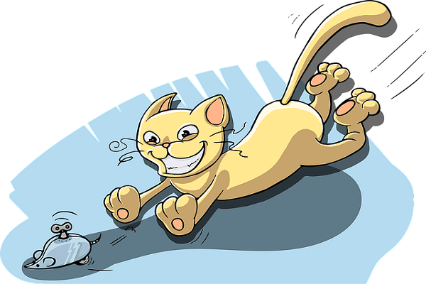 котка и игра
