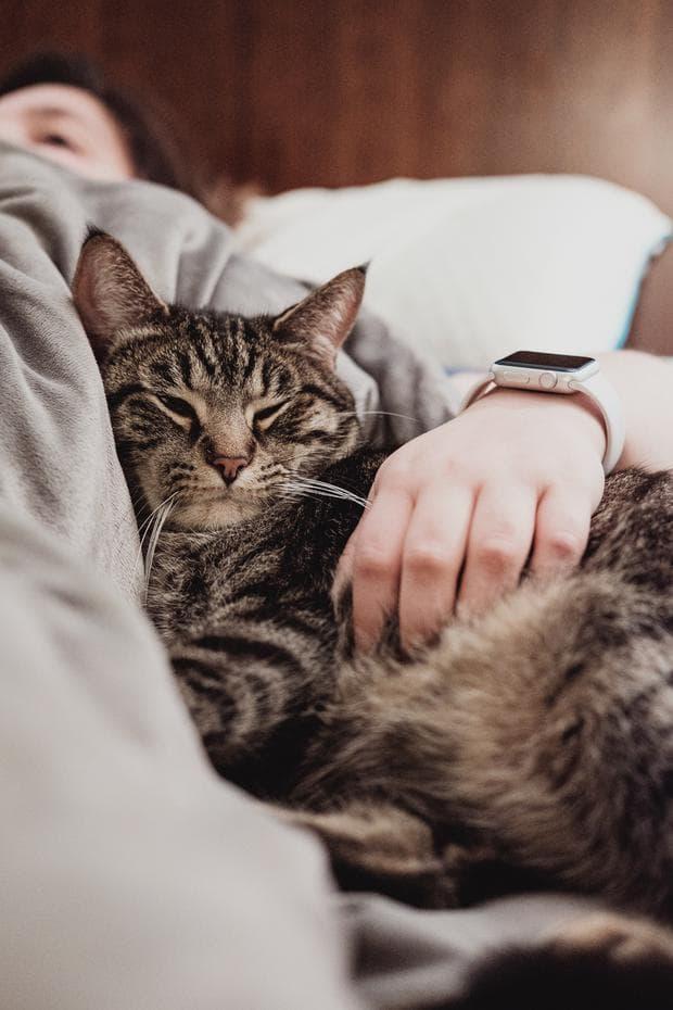 Човек с котка