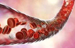 кръвоносен съд