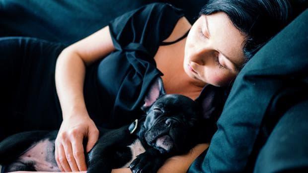 Спяща жена с куче