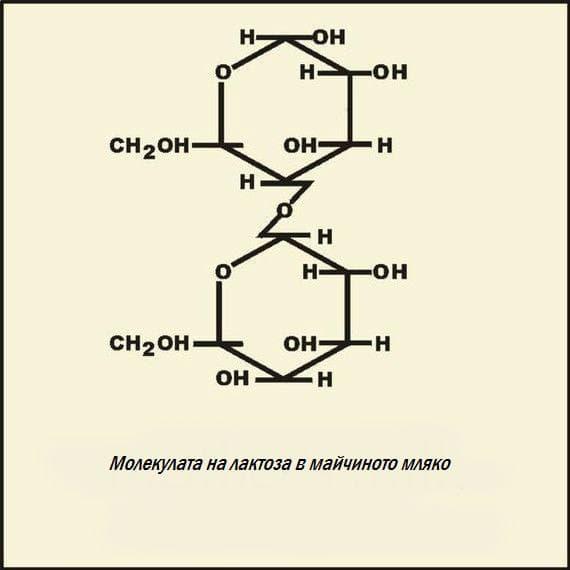 Молекулата на лактоза
