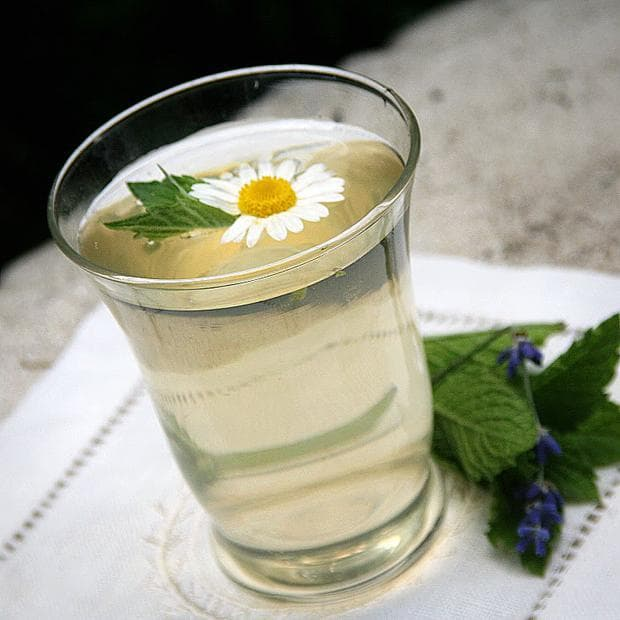 Студен чай Лайка