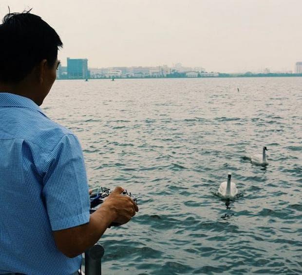 Роботи под формата на лебеди проверяват качеството на питейната вода в Сингапур