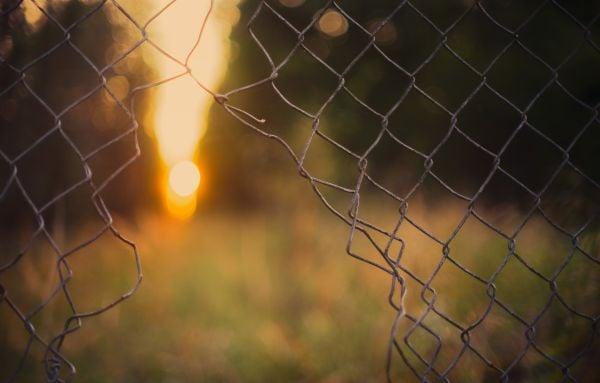 ограда, телена ограда