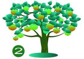 дерево №2