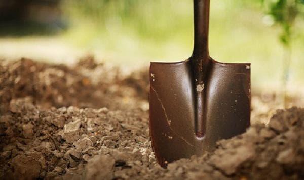 Обръщане с лопата - фитнес