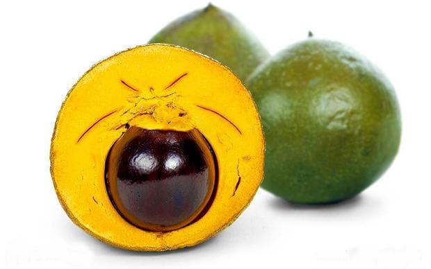 яйчен плод