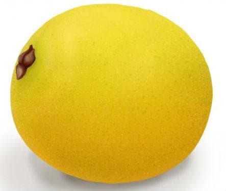 плод марула