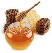 Мед и пчелни пити