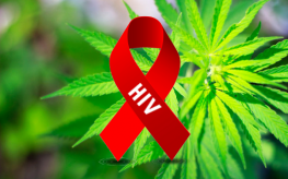 медицинска марихуана срещу ХИВ