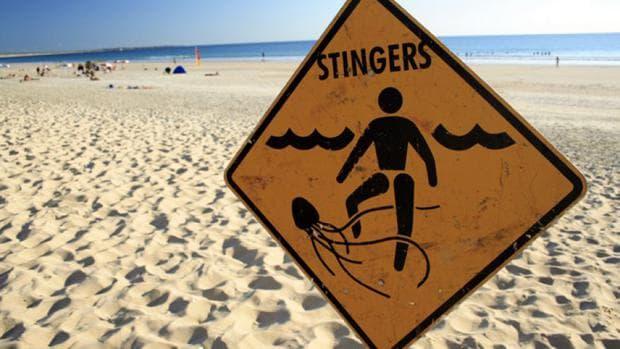 Предпазване от медузи