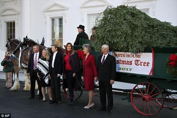 посрещане на елхата в Белия дом