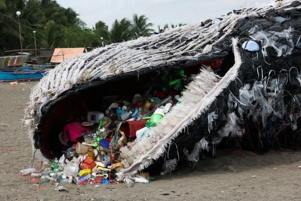 кит яде боклук