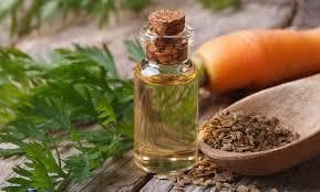 Етерично масло от семена на морков