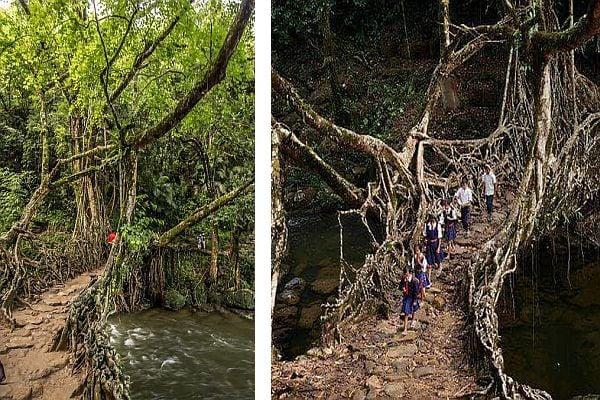 Индия, дървен мост