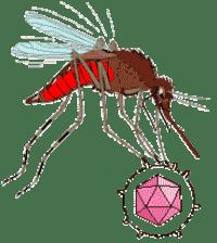mosvirus