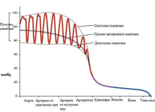 артериално налягане