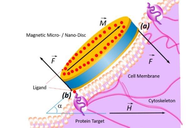 нанодискове