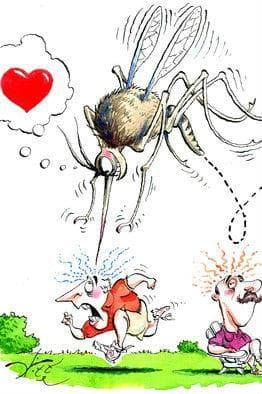 Ухапване от насекомо