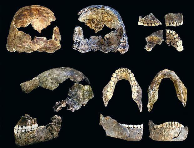 останки от древните хора