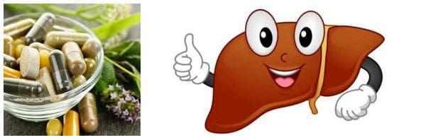 Необходимост от прием на добавки за здрав черен дроб (хепатопротектори)