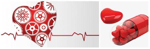Необходимост от прием на добавки за здраво сърце: витамини, минерали, билки