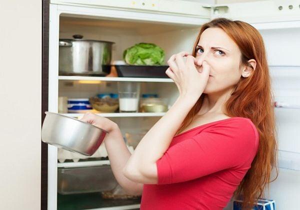 в хладилника