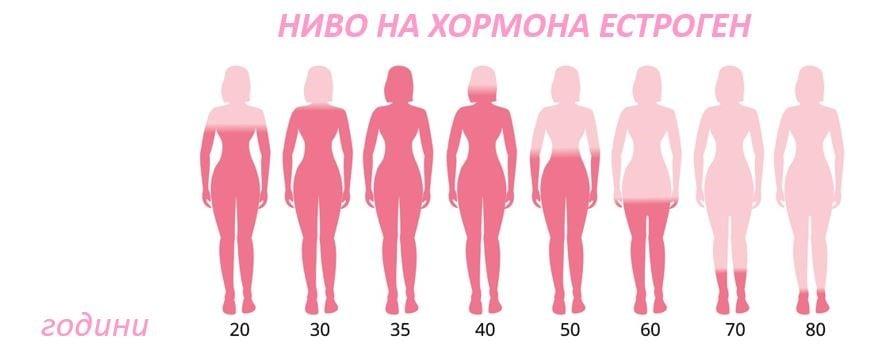 Нивата на хормона естроген при менопауза