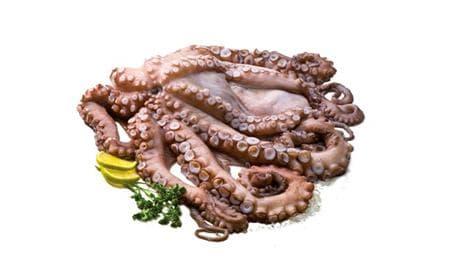 октопод