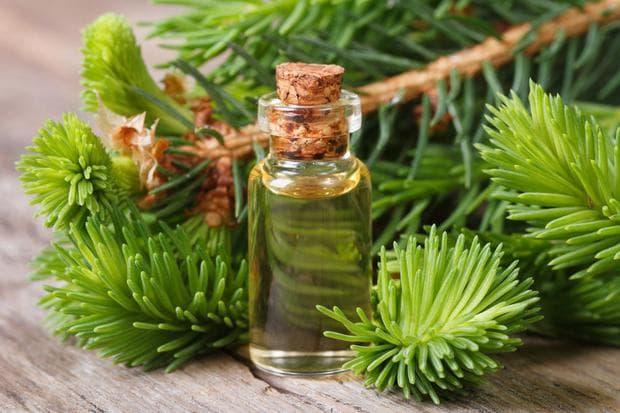 етерично масло от ливански кедър