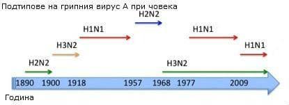 Пандемии от грип през годините