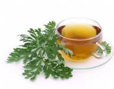 Пелинов чай