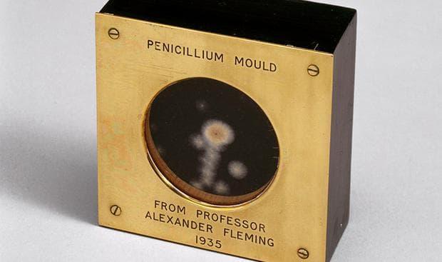 Кутия с медицинска пеницилинова плесен