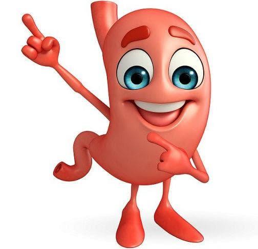 Червеното цвекло се грижи за храносмилателната система