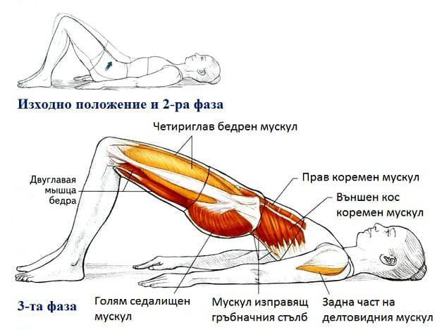 Пилатес упражнение -повдигане на таза