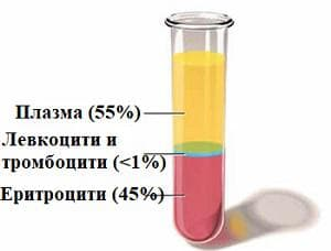 кръвна плазма