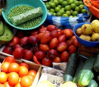 плод тамарило