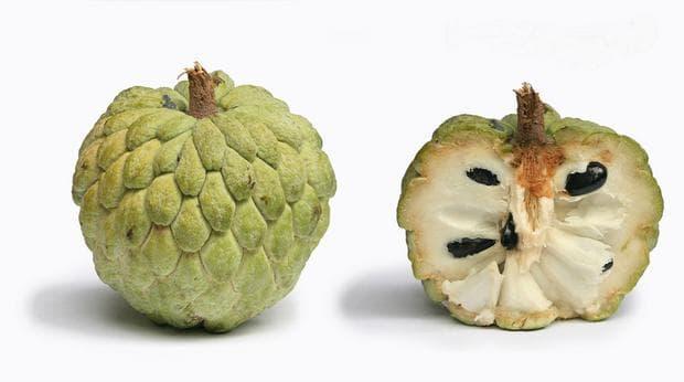 плод анона