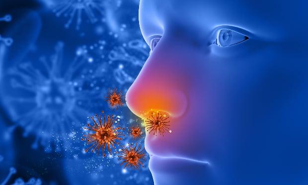 Причинители алергичен ринит