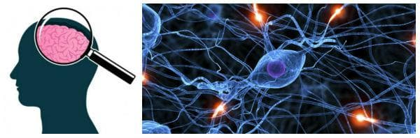 Приложение при невродегенеративни заболявания