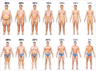 процент на мазнини