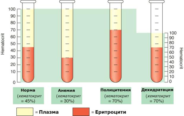 Различни стойности на хематокрита