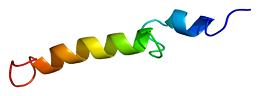 паратироиден хормон