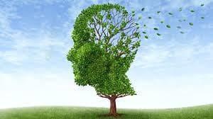 ядки на Гинко билоба срещу болест на Алцхаймер