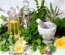 Растителни дроги с диуретичен ефект