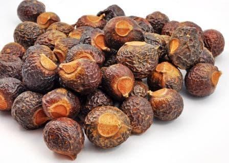 сух плод на сапунено орехче
